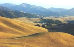 steinbeck-ranch-hills-50