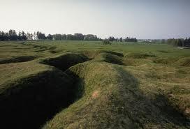 WWI grass