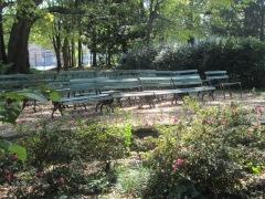 Community Reading Garden