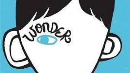 wonder (2)