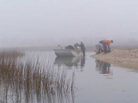 Harvesting oysters in the Low Country (sciway.net)