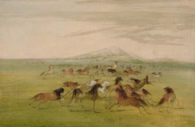 """Wild Horses"" by George Catlin ""Their manes were very profuse, and hanging in the wildest confusion over their necks and faces..."" (dariocabelleros.blogspot.com)"