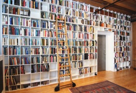 Steven Pinker and Rebecca Goldstein's Library