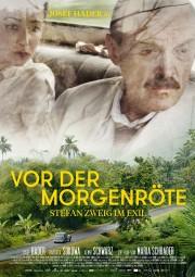 film poster_zoom SZweig