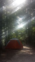 Campsite, DeSoto National Forest